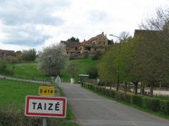 taiz_s1